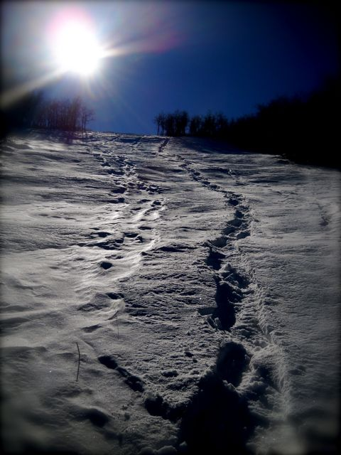 Ilg finds Spiritual Principles while Snowshoeing…