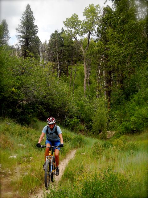 A Virtual MTB Ride/Lesson…